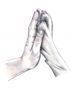 Hand und Pfote