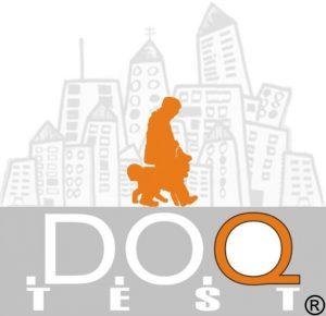 D.O.Q.-Test-2.0-Logo