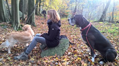 Dummywanderung mit Deutscher Dogge Salome