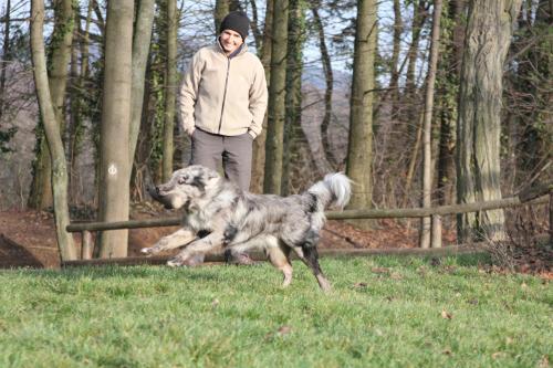 Dummy vor stolzer Hundetrainerin